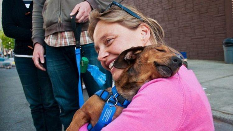 adoptar-una-mascota-de-un-refugio